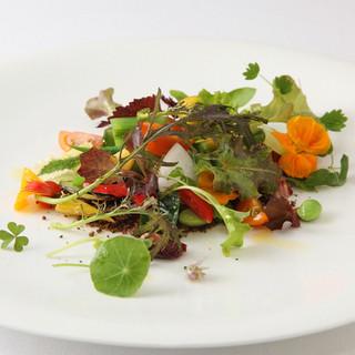 大地に見立てたサクサクの粉に野菜を載せる「湘南野菜のひと皿」
