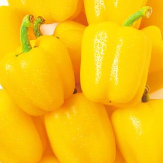 新鮮でミネラルたっぷりな季節の野菜を使用