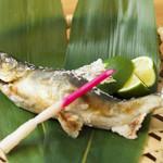 和食 たかもと - 鮎の塩焼き