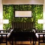 ジンジャーガーデンアオヤマ - リビングルームをコンセプトとしたテーブル席