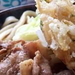 29460136 - 肉&天ぷらアップ