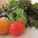 ラインライン - ミニトマトアップ