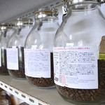 沖縄セラードコーヒー - 焙煎された豆が並びます