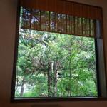 29532939 - 小上がりの窓