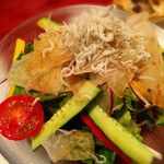 至福の富山湾 海鮮山鮮 - 有機野菜サラダ