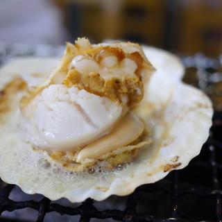 焼蛤 浜茶屋 向島 - 料理写真:ほたて