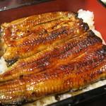 うなぎ源八 - 料理写真:26年8月 鰻重
