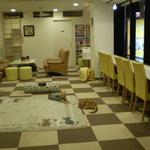 猫まるカフェ - 店内