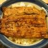 うなぎ割烹 柏家 - 料理写真:うな丼