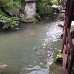 湯野温泉 紫水園 - 庭園