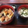 食事処やまさん - 料理写真:穴子!