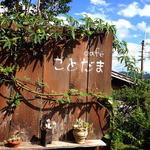 cafe ことだま - «2014年8月»