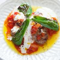 トルコ料理 ゲリック - トソースでお召し上がり下さい!