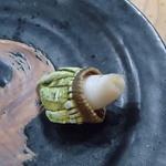 29667397 - 亀の手、こんな感じ