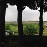 29667716 - 店前駐車場から見た荒川河川敷