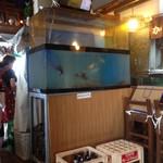加茂川 - TVは水槽の上