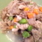 レストラン マヨール - ドッグメニュー すじ肉と野菜の煮込み・・・だったかな