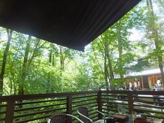 せきれい橋 川上庵 - 店内のテラス席。清流からの天然の冷風と木漏れ日が最高。