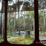 29892095 - 和室から見える庭