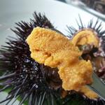 徳弥 - 殻付きウニ(活) めっちゃ美味しいです♡