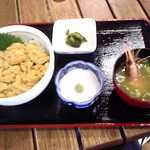 じょぐら - 2014.8.23 ウニ丼(エゾムラサキウニ)時価2.000円