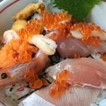海中苑 駅前店 - 11種類の海鮮丼(小)