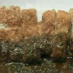 肉の吉野 - とんかつ単品(580円)をテイクアウトして贅沢カツカレーを作りました。w
