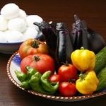 みず屋たったいす - 新鮮な野菜がウリです!