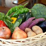 ベビーリーフ - 当店のお野菜は、地元大阪南河内のお野菜を中心に仕入れております。