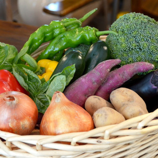 大阪南河内産の新鮮野菜