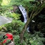 滝カフェ 器楽々 - 2Fギャラリーからの滝☆