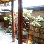 3026277 - 京町家の中庭