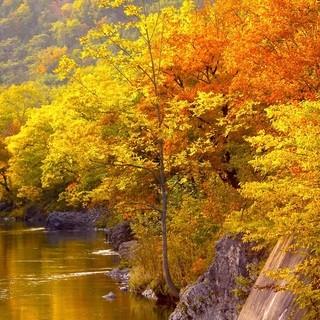 滝上町の秋