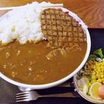 嵯峨野 - ハンバーグカレー(大)2500円 (2013/12) 洗面器みたいな器です(^^;; 食べる部分が約3Kgとのデータがありますw