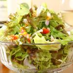 カーサ デ ソレラ - 葉物たっぷり野菜のサラダ