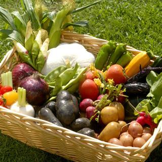 地元の野菜にこだわる