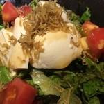 旬魚と日本酒 和食りん 渋谷店 - 豆腐とカリカリじゃこのサラダ