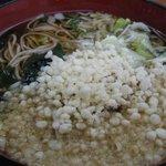 しゅぜんじ庵 - 料理写真:たぬきそば