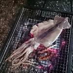 焼きいか スズキ - 料理写真:一夜干し♪シンプルだけどうまいです(^^)