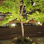 Rue Favart - 恵比寿ガーデンプレイスの木々
