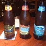 30310956 - ハワイアンビール
