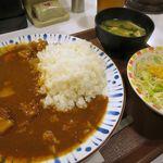 すき家 -  ポークカレー(並)420円+サラダセット100円、税込みで合計561円