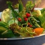 和座檜 - 自家製無農薬野菜のサラダ