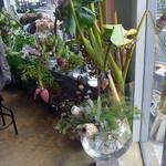 コチト - お花屋さんスペース