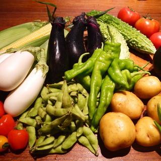 ◇こだわり◆新鮮野菜