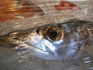 魚屋 けん坊 - 太刀魚