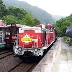 30511490 - トロッコ列車到着 わっしー号