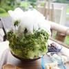 和・カフェ 蛍茶園 - 料理写真:抹茶(600円)+白玉、わらび餅、あんこトッピング(各100円)