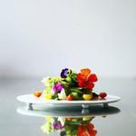 レストラン パッショーネ - 料理写真:脇坂さんちの「畑のサラダ」