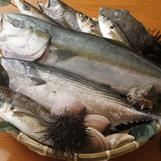 三崎から直送、新鮮&旨い魚介を堪能!